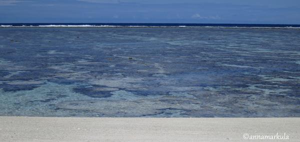 Lady_Elliot_Island_lagoon