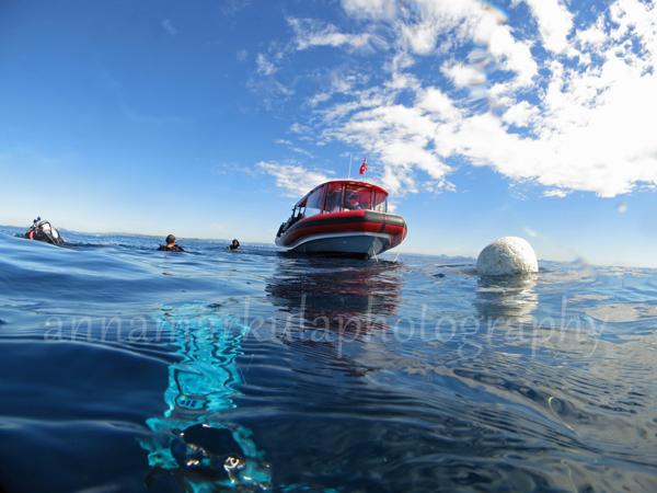 dive_boat
