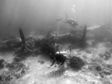 P38_b+w_divers