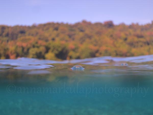 tetepare_lagoon_view