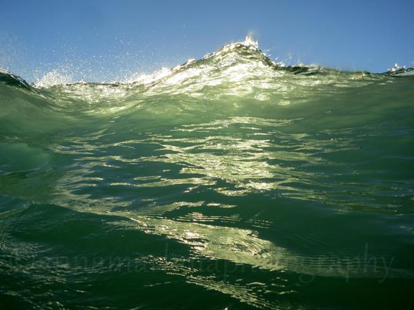 golden_light_wave