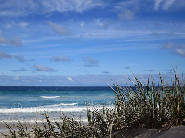 Coffin Bay ocean beach dunes