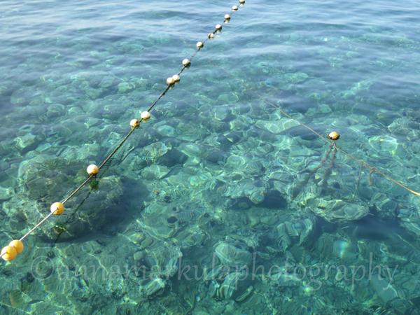 clear water Croatia ocean