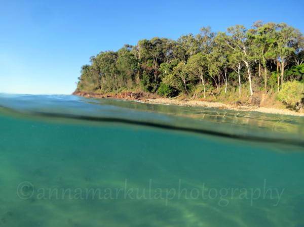 underwater landscape Little Cove Noosa