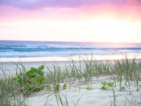 Enchanted Sunrise